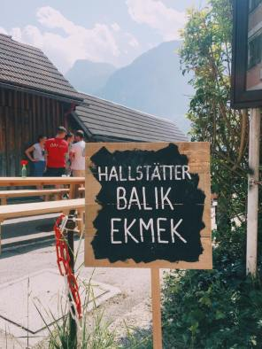 friendship hallstatt 2017 13